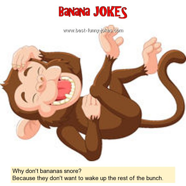 Why don't bananas snore? Bec