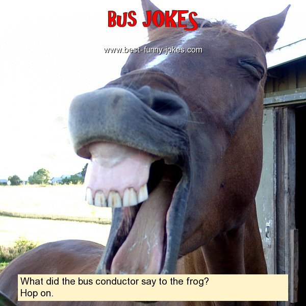 What did the bus conductor say
