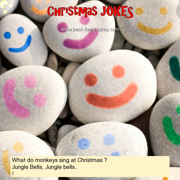 What do monkeys sing at Christ