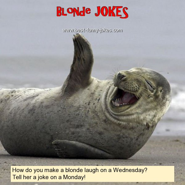 How do you make a blonde laugh