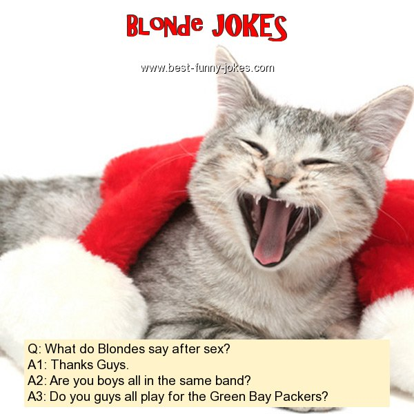 Q: What do Blondes say after s