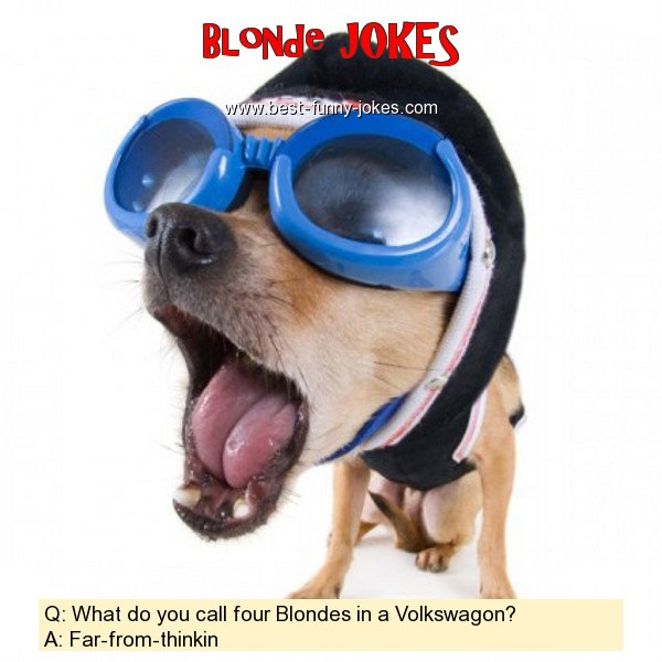 Q: What do you call four Blond