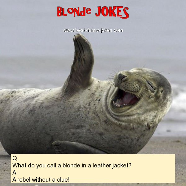 Q. What do you call a blonde i