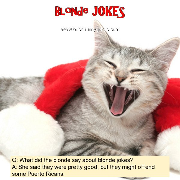 Q: What did the blonde say a