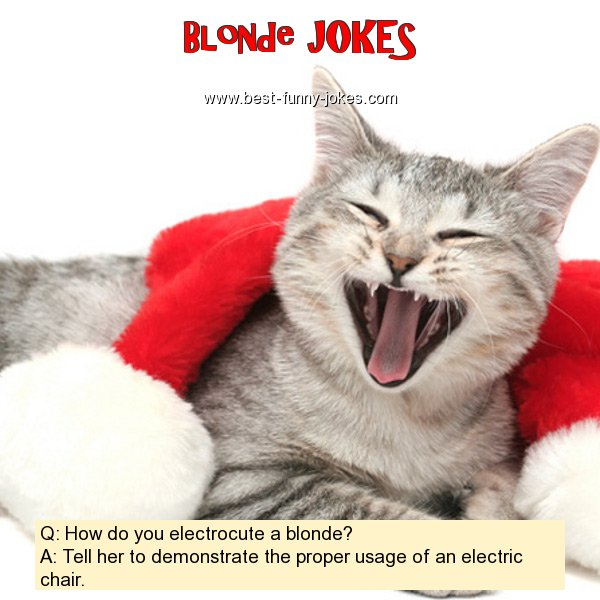 Q: How do you electrocute a bl