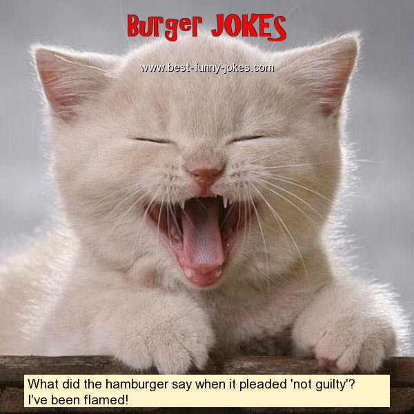 What did the hamburger say whe