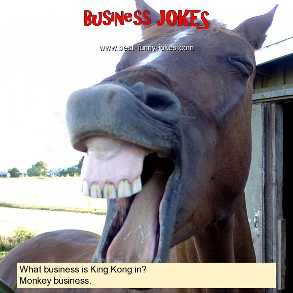 What business is King Kong in?