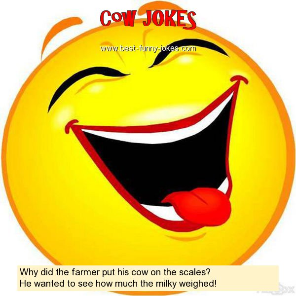 Why did the farmer put his cow