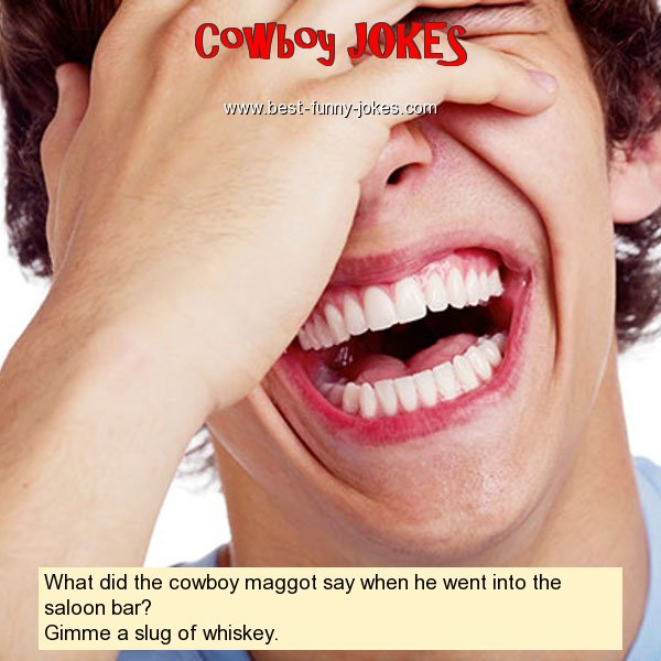 What did the cowboy maggot say
