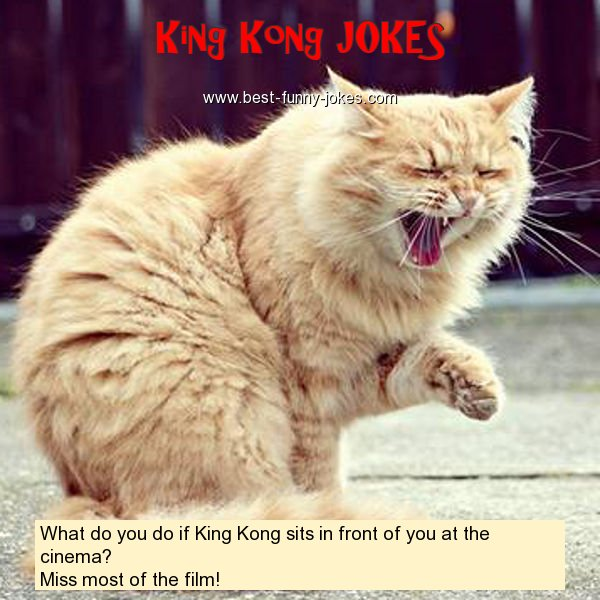 What do you do if King Kong si