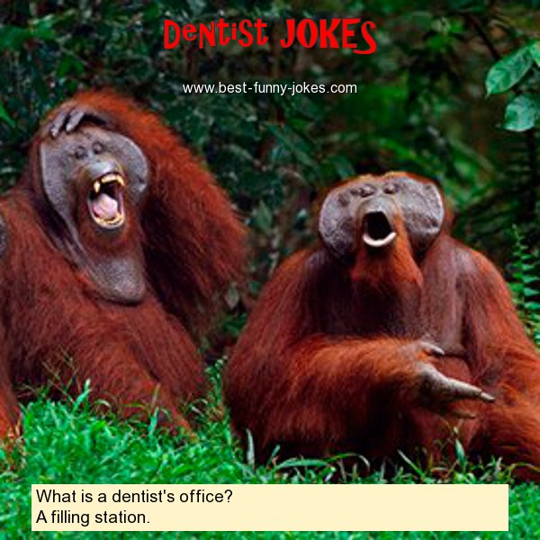 What is a dentist's office? A