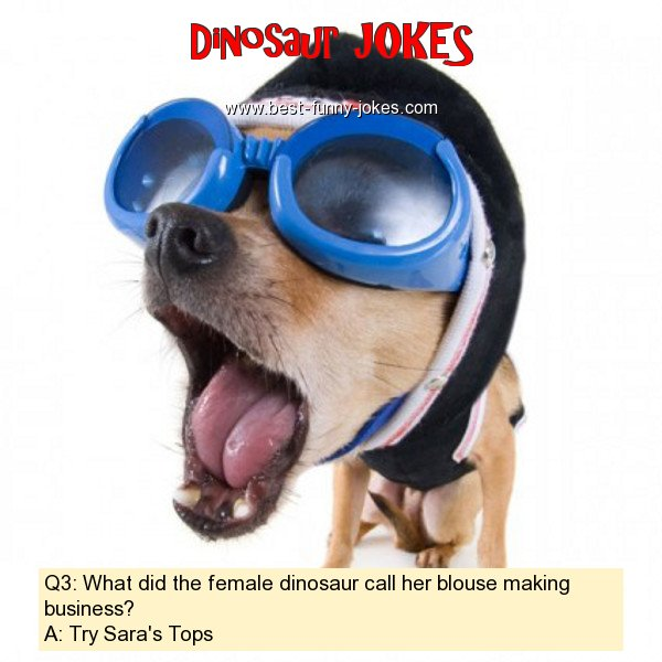Q3: What did the female dinosa