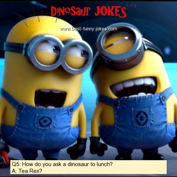 Q5: How do you ask a dinosaur