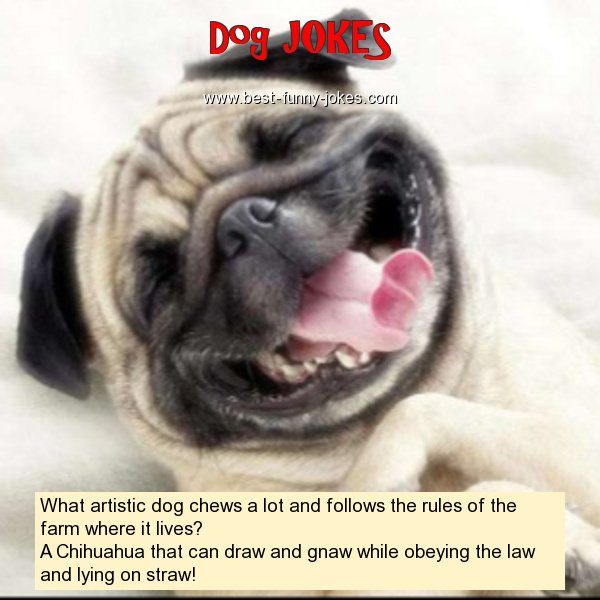 What artistic dog chews a lo
