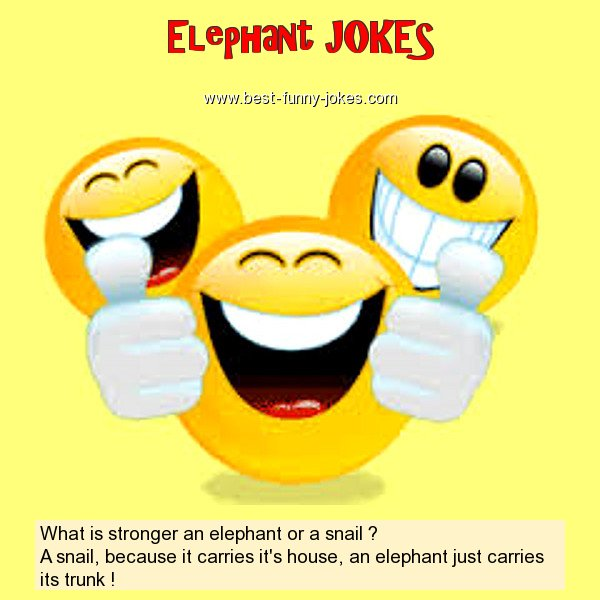 What is stronger an elephant o