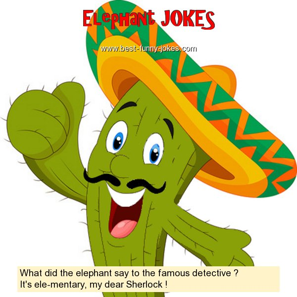 What did the elephant say to t