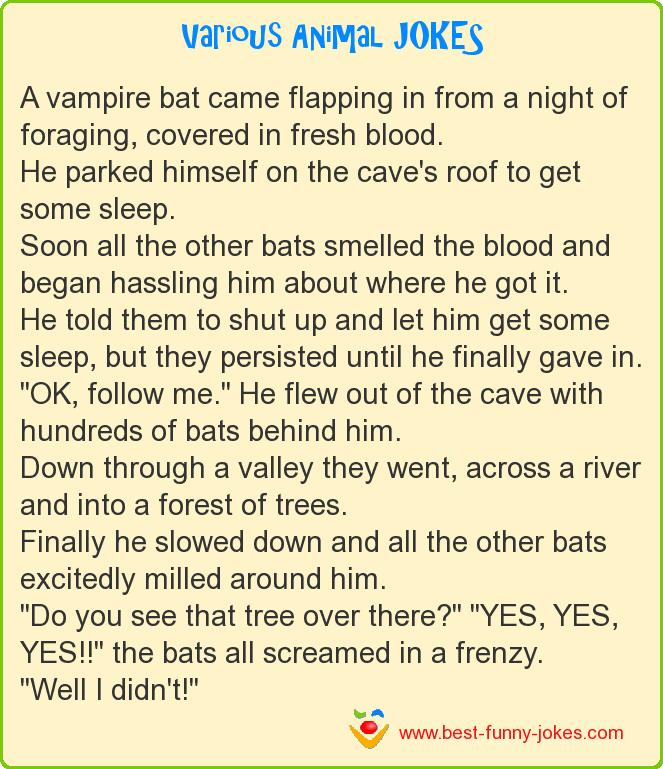 A vampire bat came flapping in