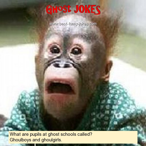 What are pupils at ghost schoo