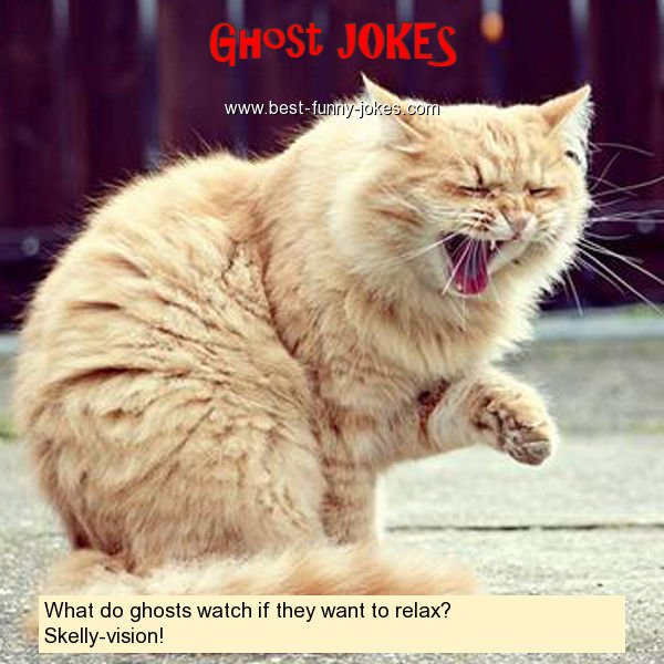 What do ghosts watch if they w