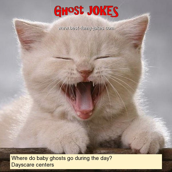 Where do baby ghosts go during