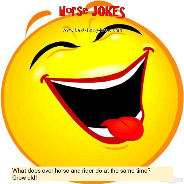 What does ever horse and rider