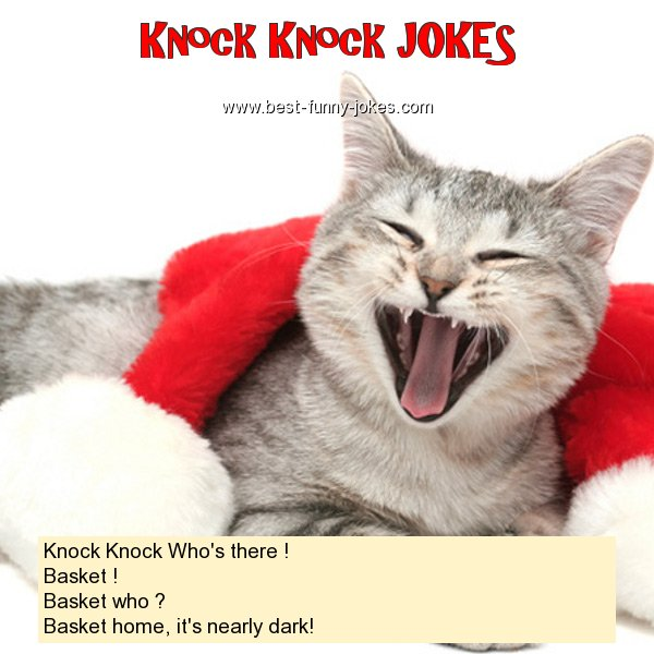 Knock Knock Who's there ! Ba