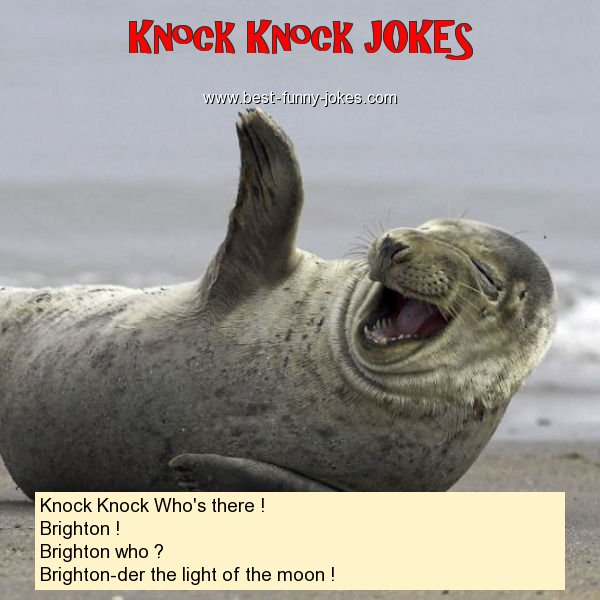 Knock Knock Who's there ! Br