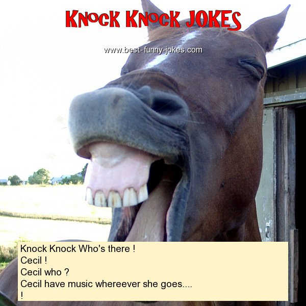 Knock Knock Who's there ! Ce