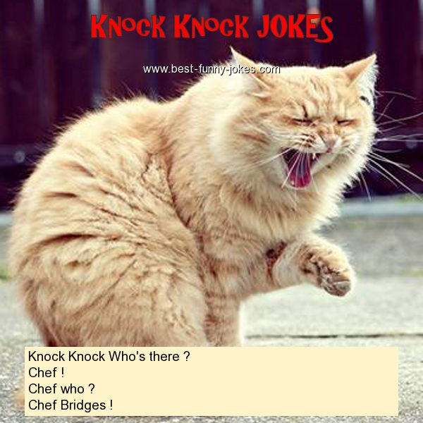 Knock Knock Who's there ? Ch