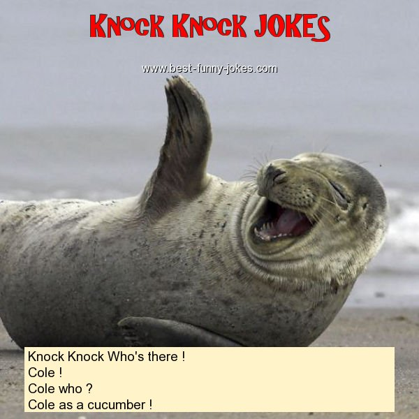 Knock Knock Who's there ! Co