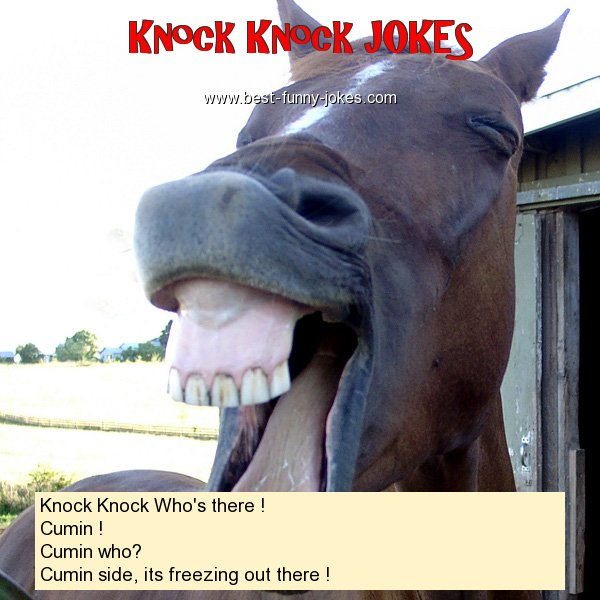 Knock Knock Who's there ! Cu