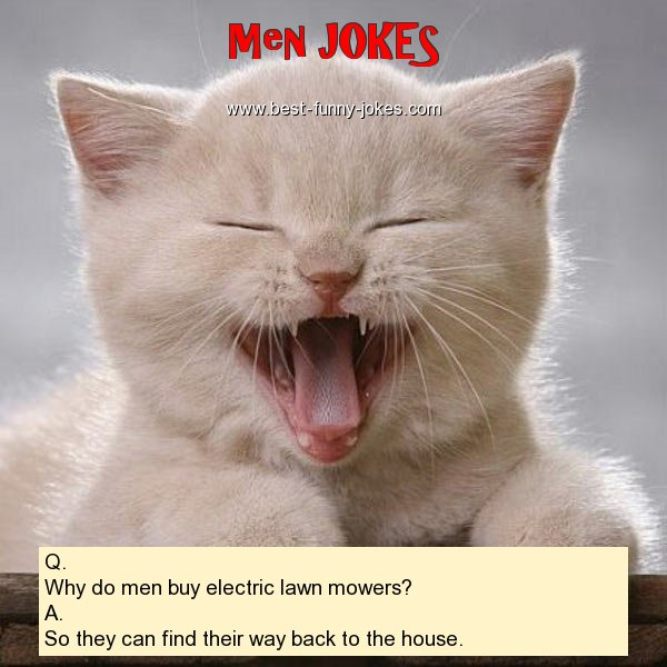 Q. Why do men buy electric l