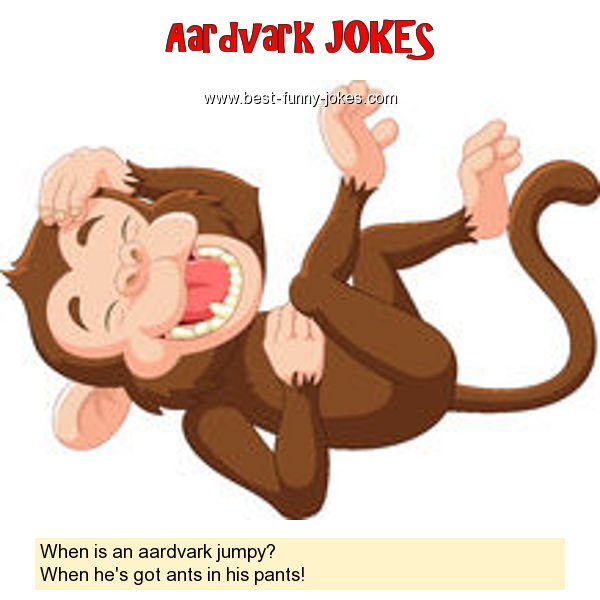 When is an aardvark jumpy? Wh