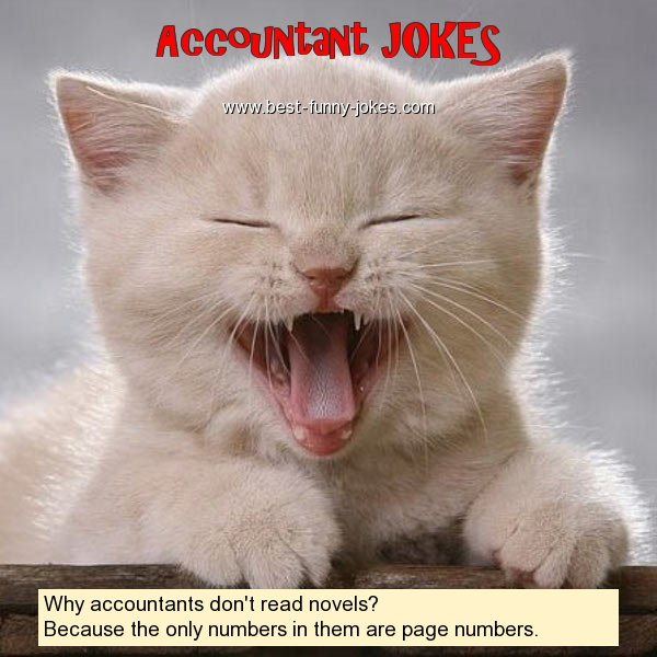 Why accountants don't read n