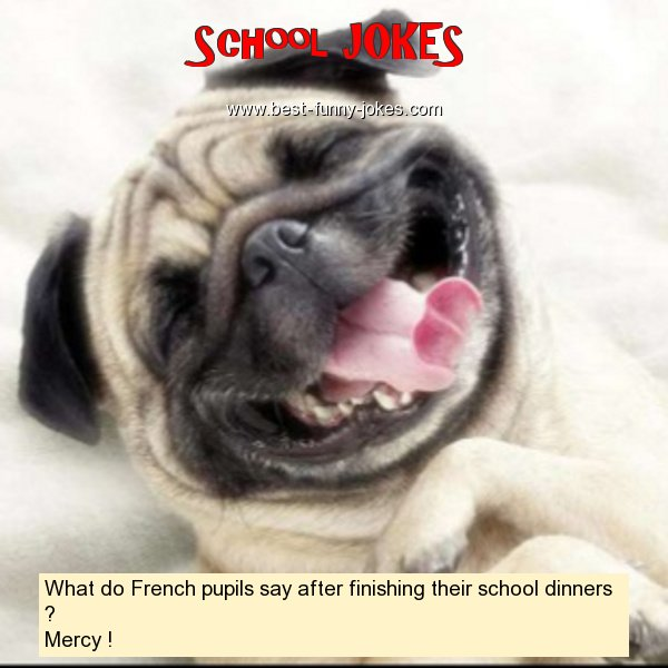 What do French pupils say af