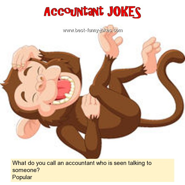What do you call an accountant