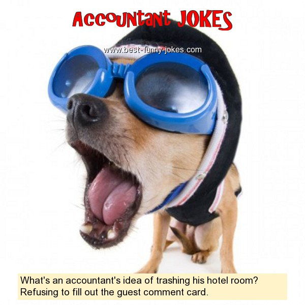 What's an accountant's idea of