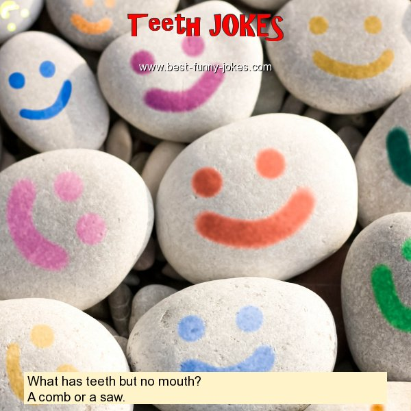 What has teeth but no mouth?